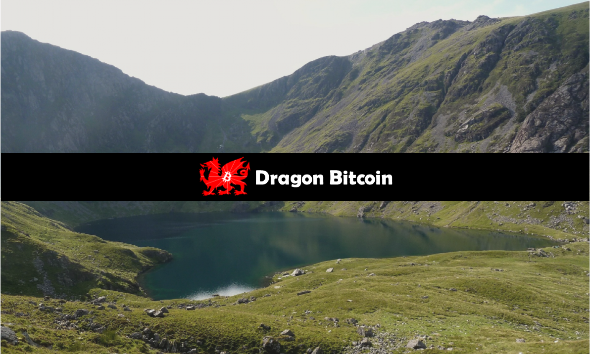 Dragon Bitcoin